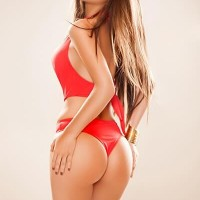 My Escort Amsterdam - Escort Agencies in Arnhem - Talisa